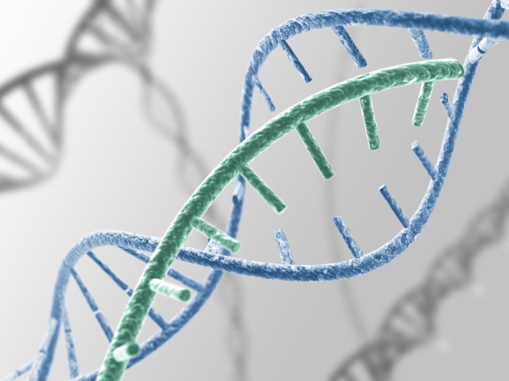 ung thư đại trực tràng có di truyền không