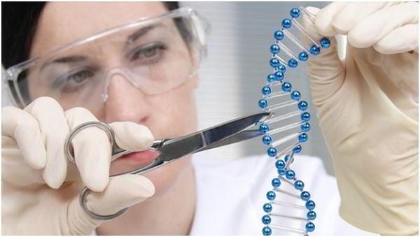 Ung thư gan là bệnh có khả năng di truyền