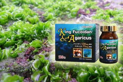 king fucoidan & agaricus