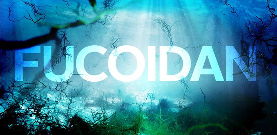 công dụng của fucoidan nhật bản