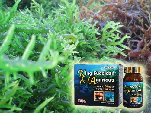 King Fucoidan hỗ trợ điều trị ung thư phổi