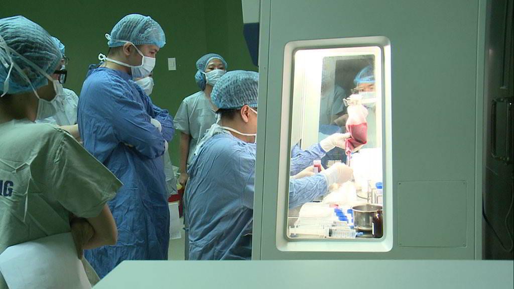 Cấy ghép tế bào gốc