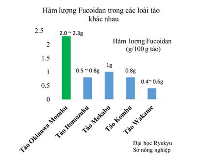 hàm lượng fucoidan trong tảo mpzuku