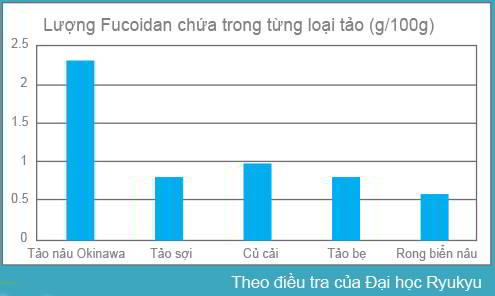 ham-luong-fucoidan-trong-tung-loai-tao-bien
