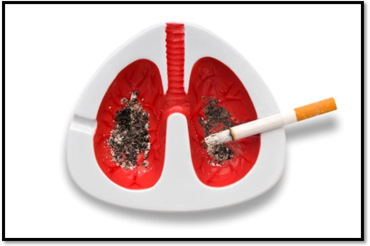 Thuốc lá là tác nhân gây ung thư hàng đầu