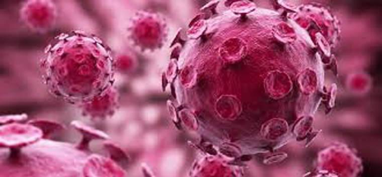 nguyên nhân ung thư dương vật
