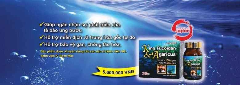 Banner sản phẩm king fucoidan agaricus nhật bản