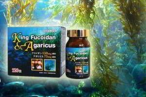 Khả năng ngăn chặn ung thư buồng trứng của Fucoidan